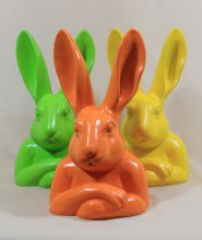 Hase-kopf, orange