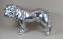 Bulldogge chrome