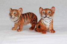 Tigerbaby 2-er Set